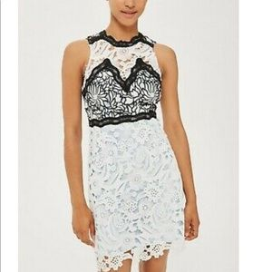 Topshop Lace Cocktail Dress Baby Blue White 6